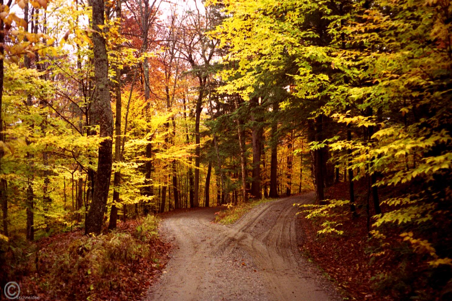 a road not taken and two The poem the road not taken written by robert frost from the first glance seems to be very simple in  we are not living in the two-dimensional.